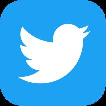 twitter logo in blue